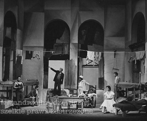 Wielka wystawa (1955)