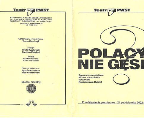 Polacy nie gęsi (program)